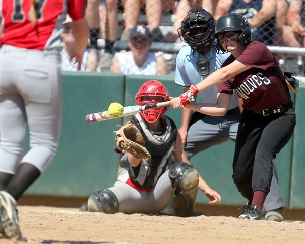 Wolves take fourth place at State Softball