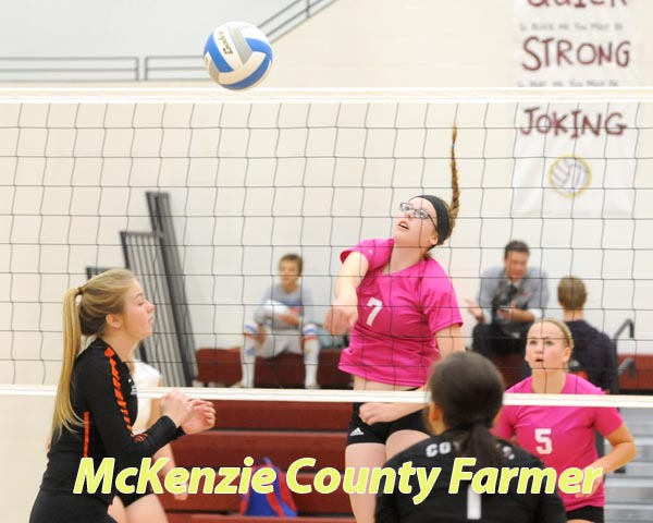 Spikers roll over Williston High