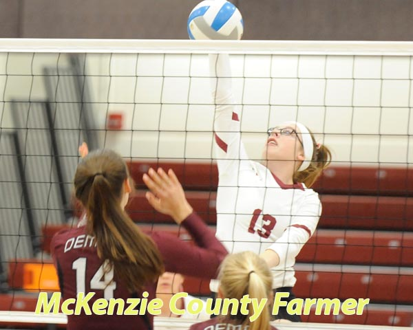 McGorman named to All-WDA volleyball team